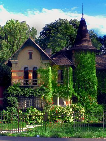 terrific: Witch House