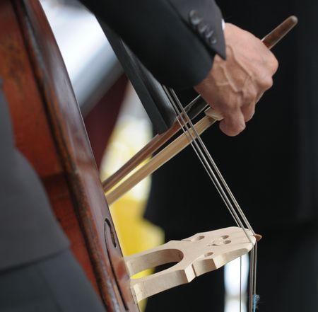 Double bass player's hand detail Standard-Bild