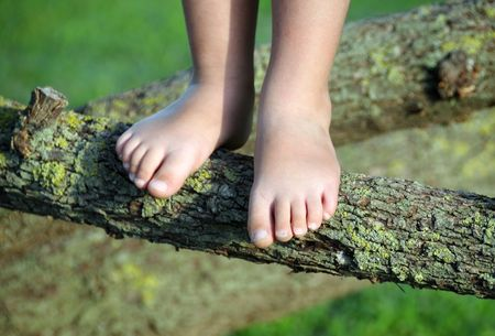 Detail of childs feet poised on a tree branch Stock Photo