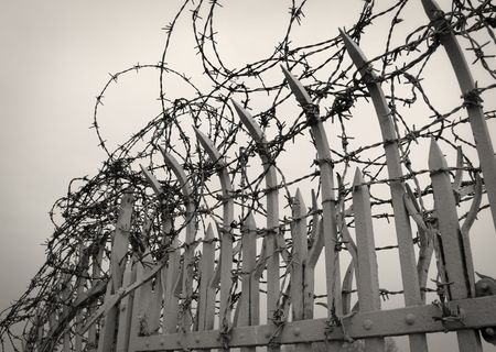 Barbed wire detail photo