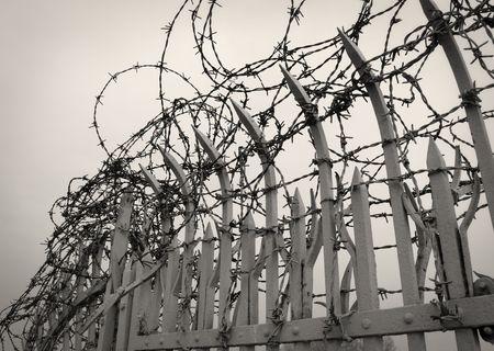 Barbed Wire detail Standard-Bild - 6276342