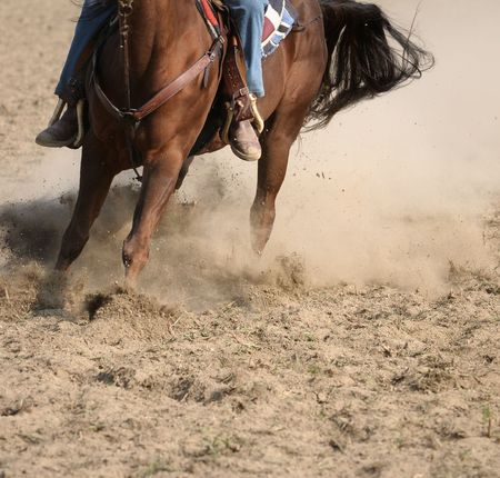 Running horse during a rodeo event photo