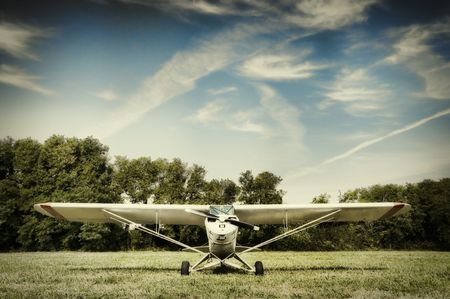 Small airplane parked in a meadow