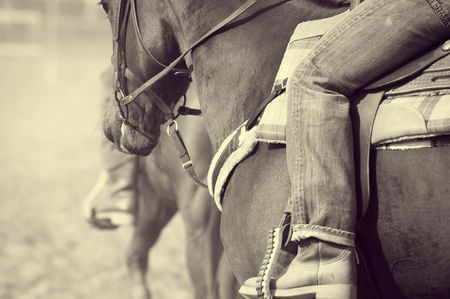 Old west: Detail of an horse and rider during a rodeo photo