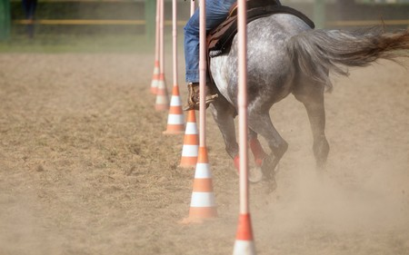 obstacle course: Horse race: Pole bending