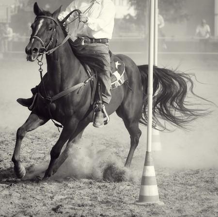 Horse race: Pole bending  Standard-Bild