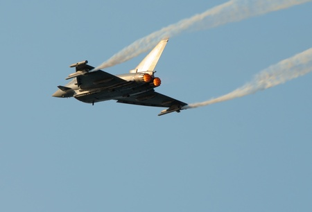 airforce: Eurofighter typhoon. No brands,names,plates,etc recognizable