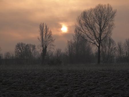 Winter landscape Stock Photo - 9424289