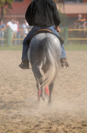 powdery: Horse back with raider while walking on dirty ground Stock Photo