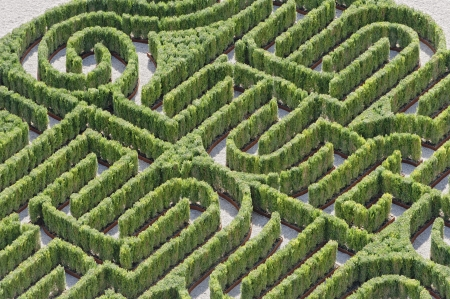 Hedges labyrinth Stock Photo