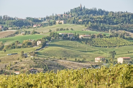 vine country: Italy  Apennines landscape
