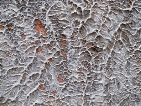 scratchy: Scratchy plaster surface  Stock Photo