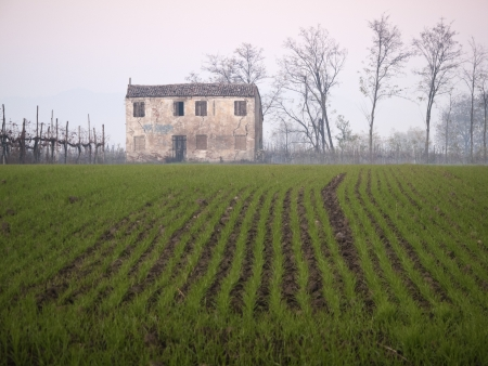 Winter rural landscape with old ruin photo