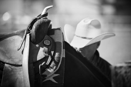 rodeo americano: Parte de una silla de montar occidental en un caballo de nuevo Foto de archivo