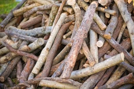 recursos naturales: Pila de piezas de madera