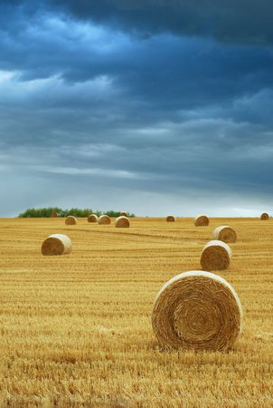 Hay Bales in Field with Stormy Sky