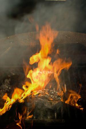 broiled: Flame-Broiled Hamburger
