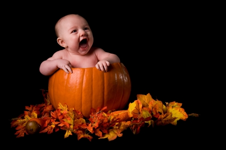 babies: Baby in Large Pumpkin Isolated on Black