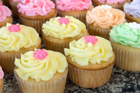 Rows of Pastel Colored Romantic Cupcakes Stock Photo - 9064606
