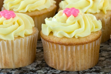 Vanilla Cupcakes with Buttercreme Icing