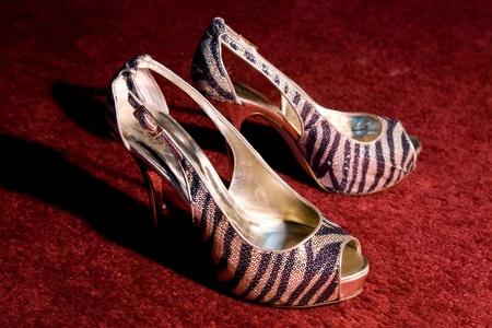 Zebra Print Gold and Black Shoes