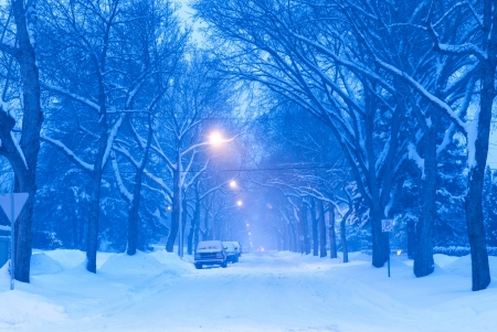 Winter Scene On Residential Street in Edmonton, Alberta, Canada