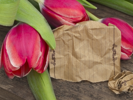 paper note with red tulips photo