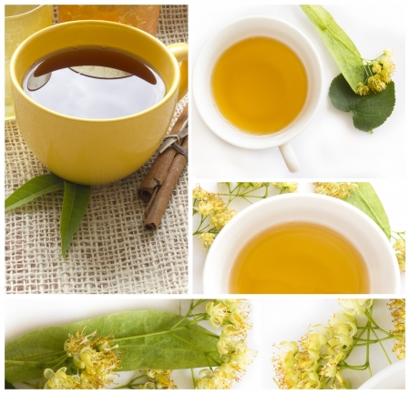 linden tea: linden tea collage Stock Photo