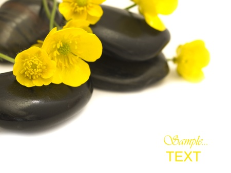 zen stones with yellow flowers photo