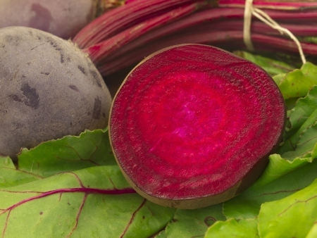 beetroot photo