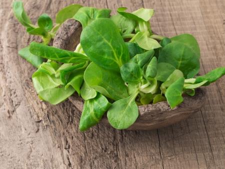 Valeriana locusta,corn salad,lamb s lettuce