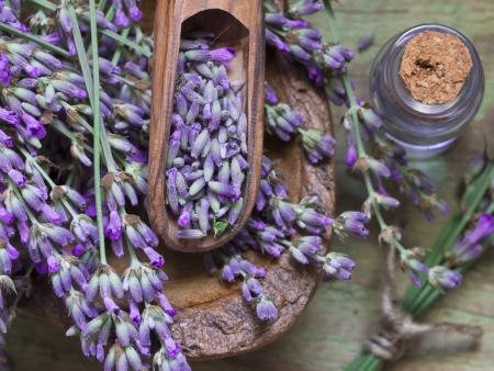 lavender spa Zdjęcie Seryjne