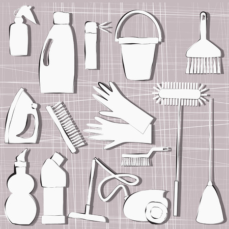 whisk broom: cleaning items