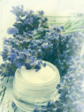 facial cream: facial cream with lavender