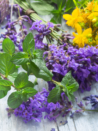 wort: lavender, st john.s wort and mint