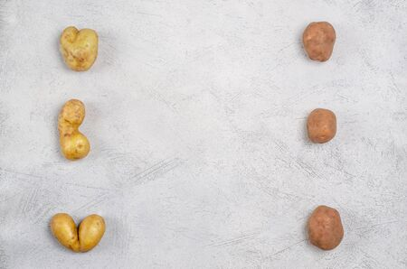 Despicable potatoes of different shapes on a gray background, copy space. Ugly potatoes, funny, unusual concept of vegetables or food waste. Horizontal orientation. View from above