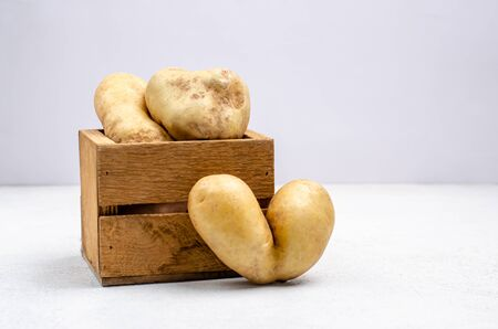 Despicable potatoes of different shapes in a wooden box on a gray background, copy space. Funny, unusual concept of vegetables or food waste. Horizontal orientation. Close-up
