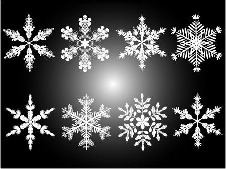 Isolated snowflakes in different variations.