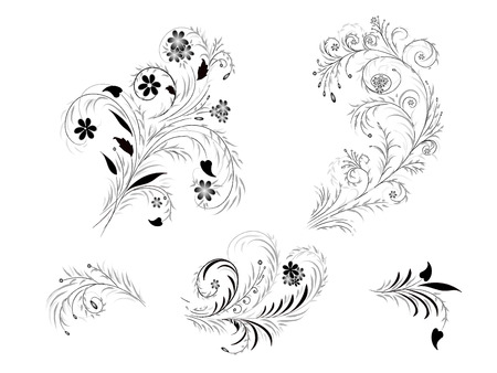 Isolated floral design elements in different variations