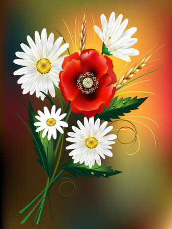 A bouquet of field flowers with poppy and daisy 일러스트