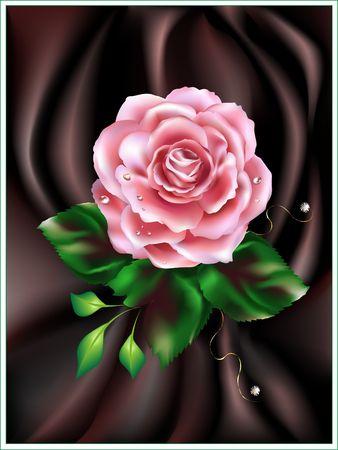 Rose to brown atlas