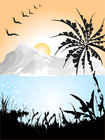 Landscape with birds and Palm. Vector