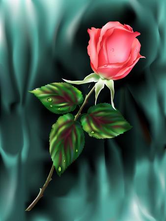 Rose op turquoise achtergrond   Vector Illustratie