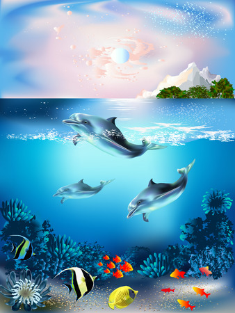 dolphins: The underwater world with dolphins and plants Illustration