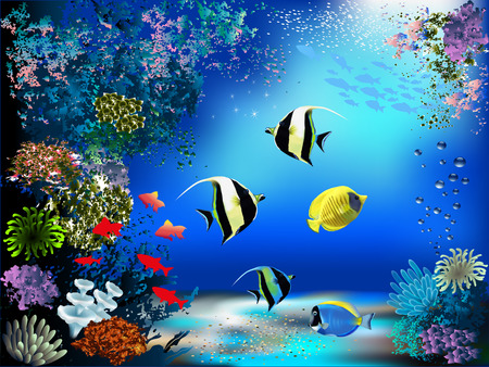 and marine life: The underwater world with fish and plants