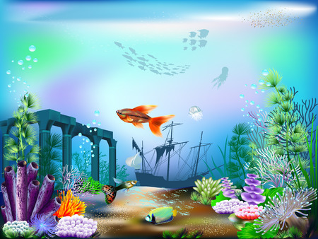 underwater: The underwater world with fish and plants