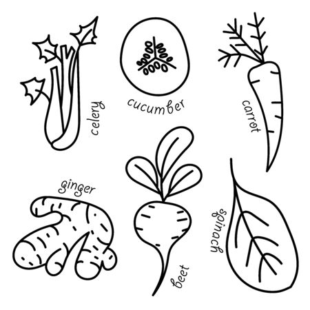 Vector vegetables pattern.