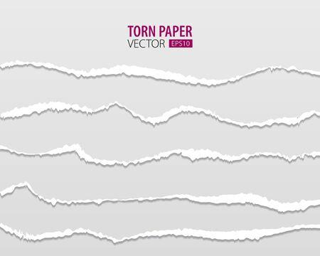Bordes de papel rasgados. Vector de papel rasgado con bordes rasgados sobre un fondo transparente para web e impresión.