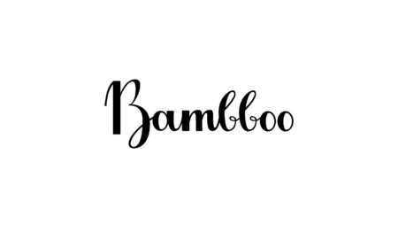 Lettering Bambboo isolated on white background for print, design, bar, menu, offers, restaurant. Modern hand drawn lettering label for alcohol cocktail Bambboo for layout and template Stock Vector - 135697955