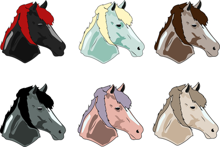 Horses Icons